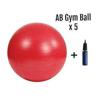 AB Gym Ball BULK PACK Ø 55 cm