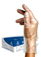 Powdered Vinyl Glove | 100 pcs | L